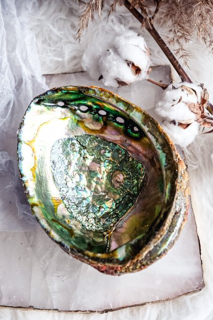 Duhová Lastura Abalone