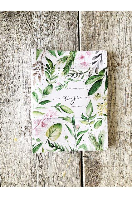 Pozitivní Deník - Můj krásný život