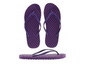 Purple Petunia (1)