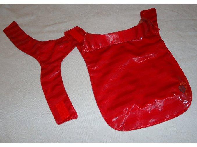 červeníá pláštěnka (2)