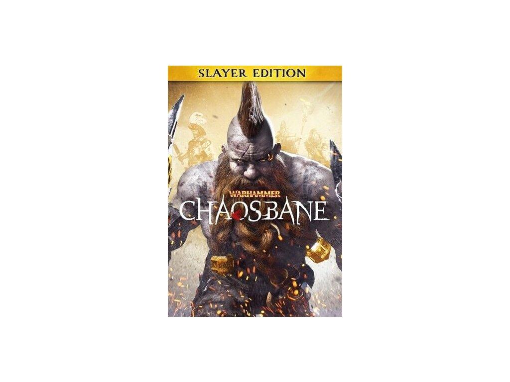 2921 warhammer chaosbane slayer edition steam pc