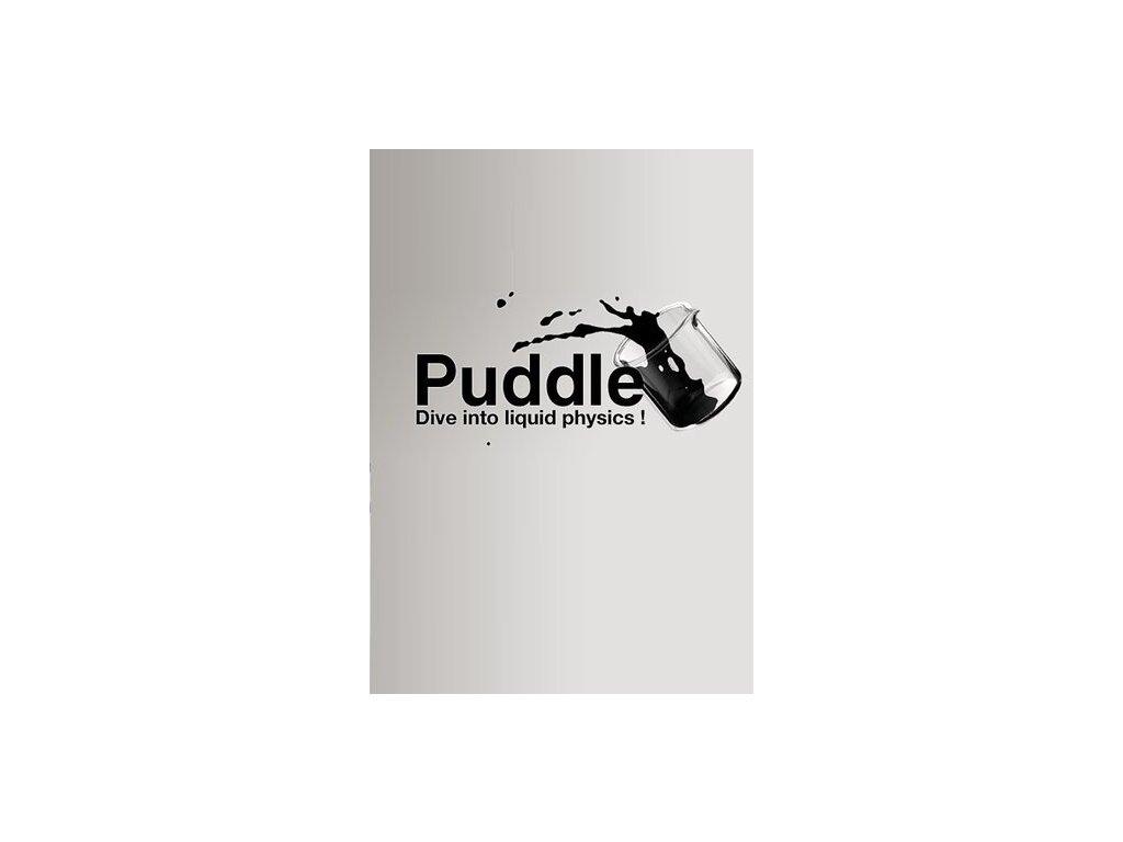 2981 puddle steam pc