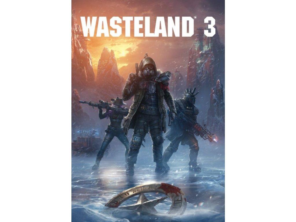 3956 wasteland 3 steam pc