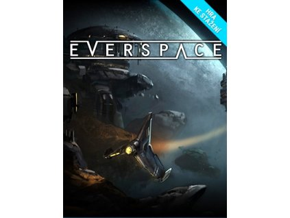 5318 everspace steam pc
