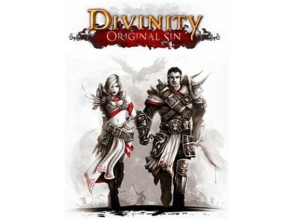 6806 divinity original sin enhanced edition gog pc