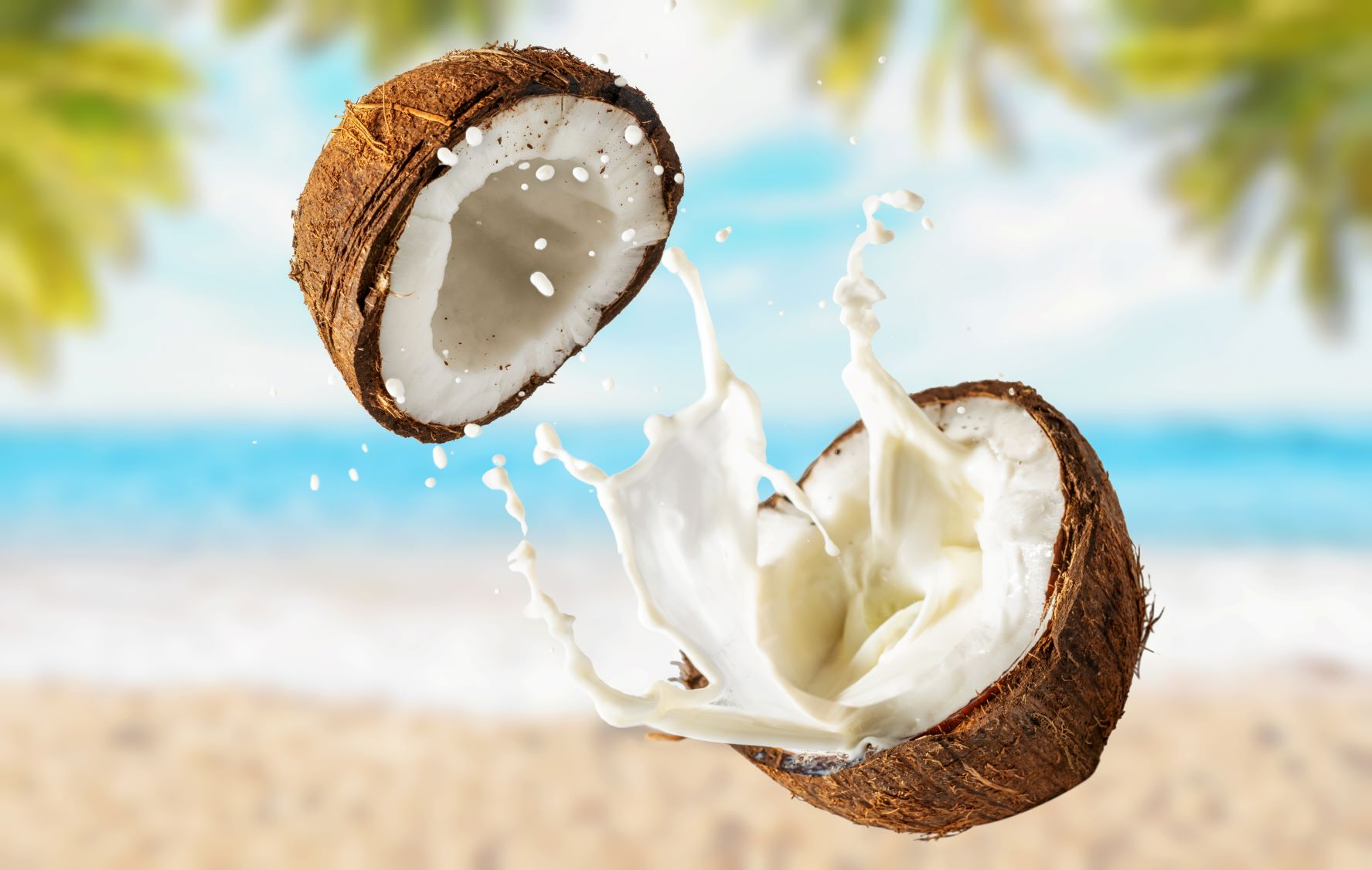 mcoconut-with-milk-beach-with-palm-trees