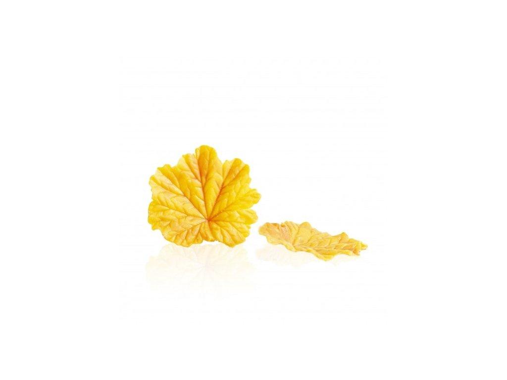 čokoládová dekorácia List okrúhly veľký žltý pr. 55mm 24ks (77688)