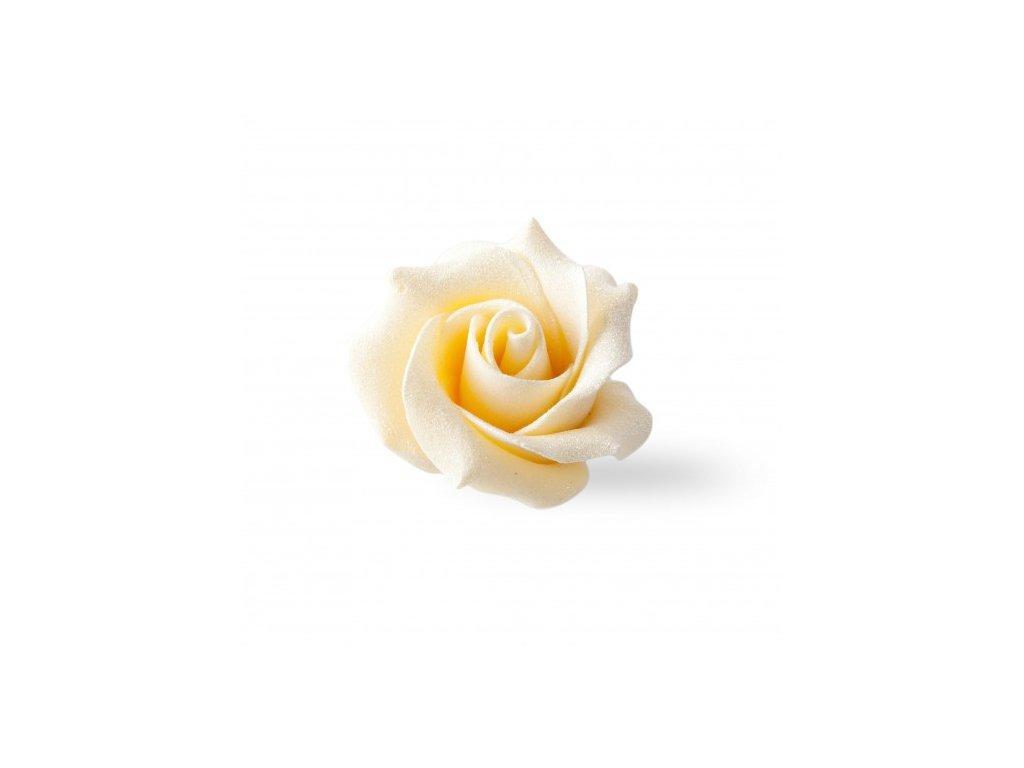 8259 cokoladova dekoracia biela ruza 45x30mm 15ks