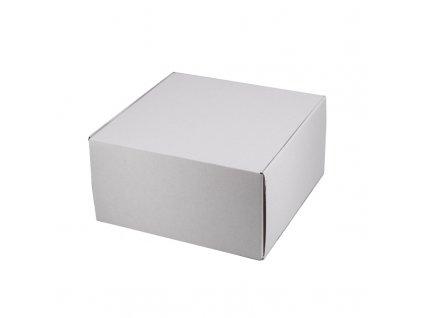 4170 1 kartonova krabicka 250x250x130