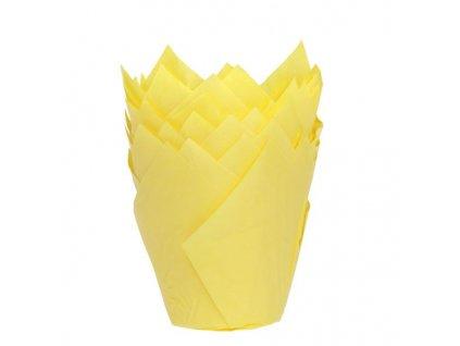 5922 1 kosicky na muffiny tulip yellow 36ks hof
