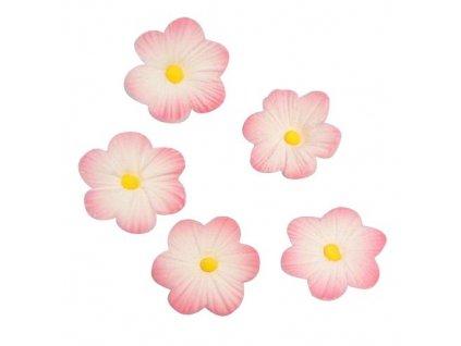 Cukrová dekorácia Margarétka ružová 12ks