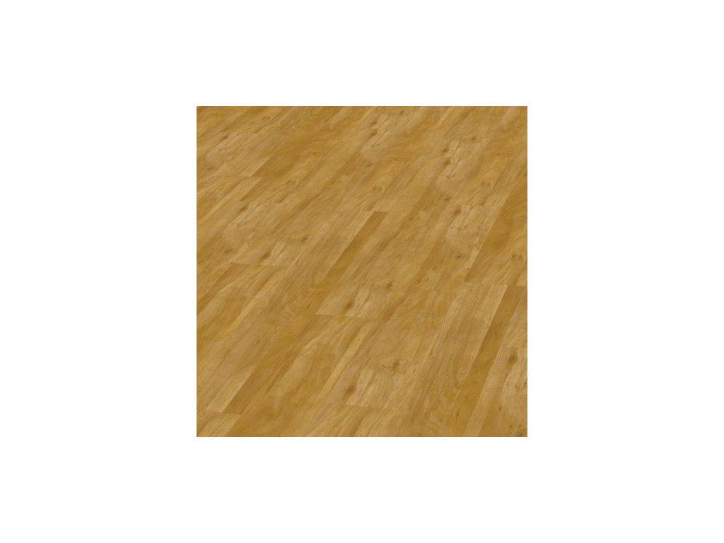 Objectflor Expona Domestic C2 5953 Wild Oak