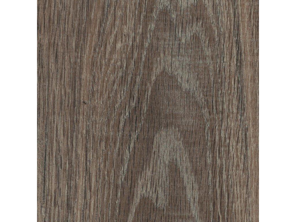 Haven oak
