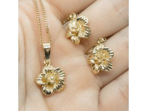 Gold Set FL-60
