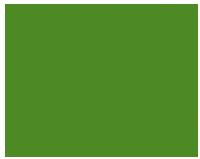 Brasileiro U Zelené žáby