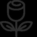 Ikona_Typ ruže
