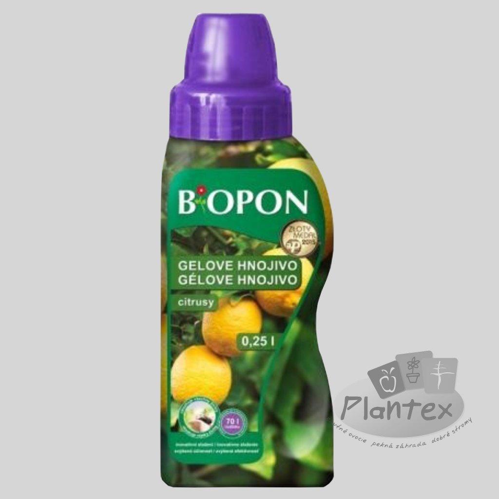 b citrusy