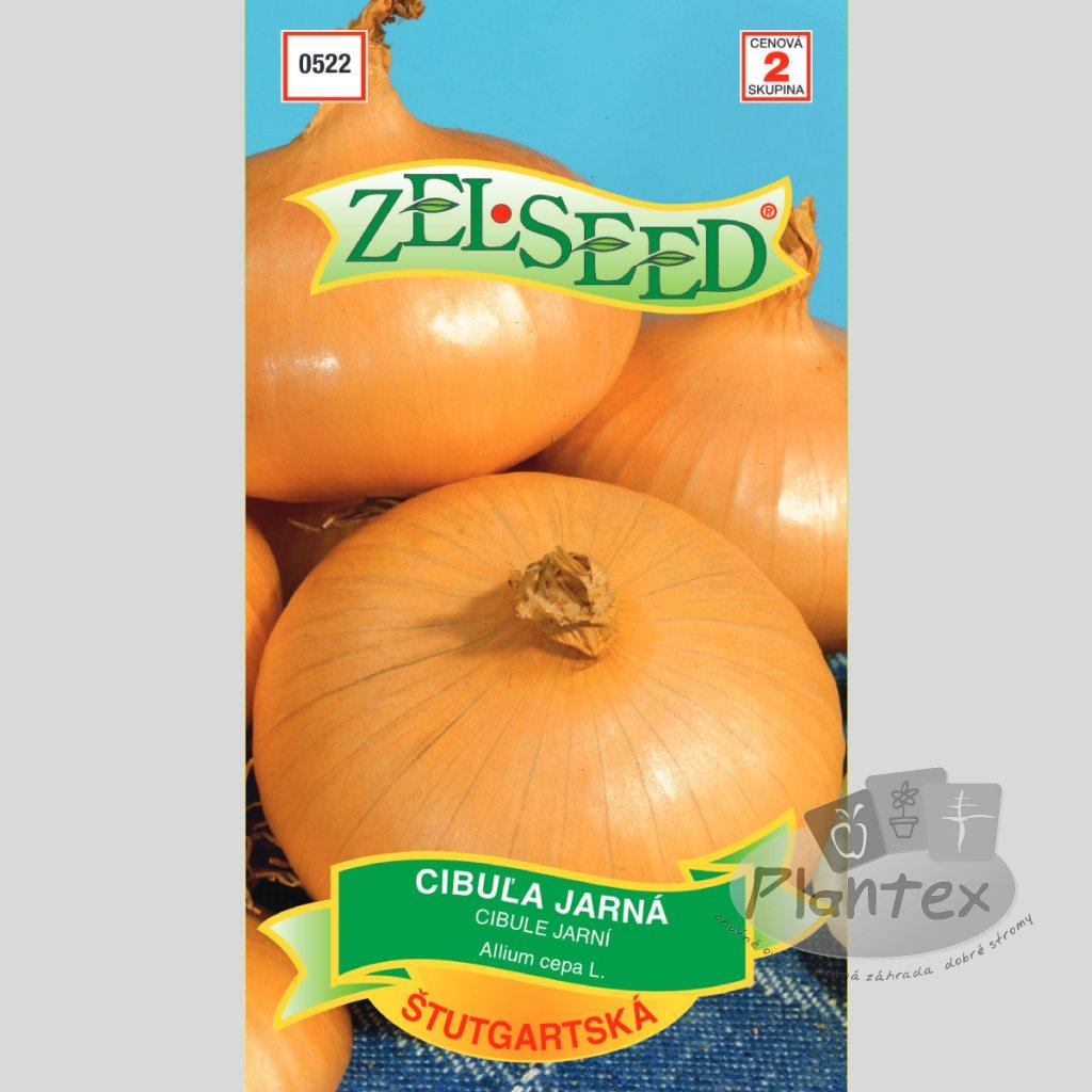 semena cibulajarnastut(1)