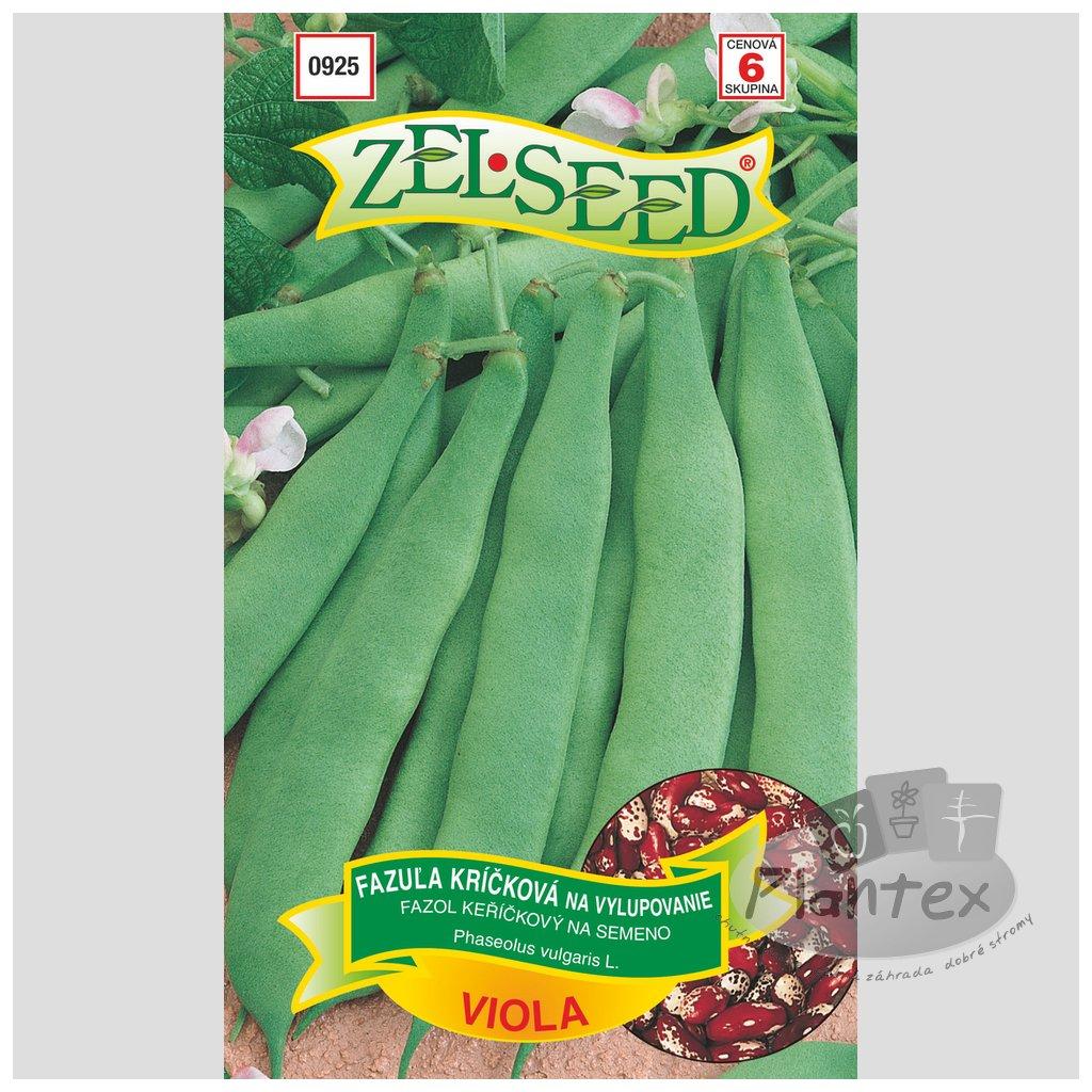 Zelseed semena fazula viola 1