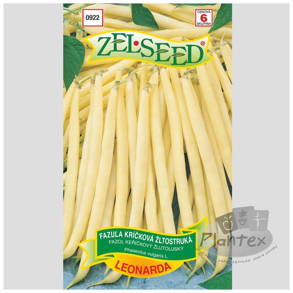 Zelseed semena fazula leonarda 1