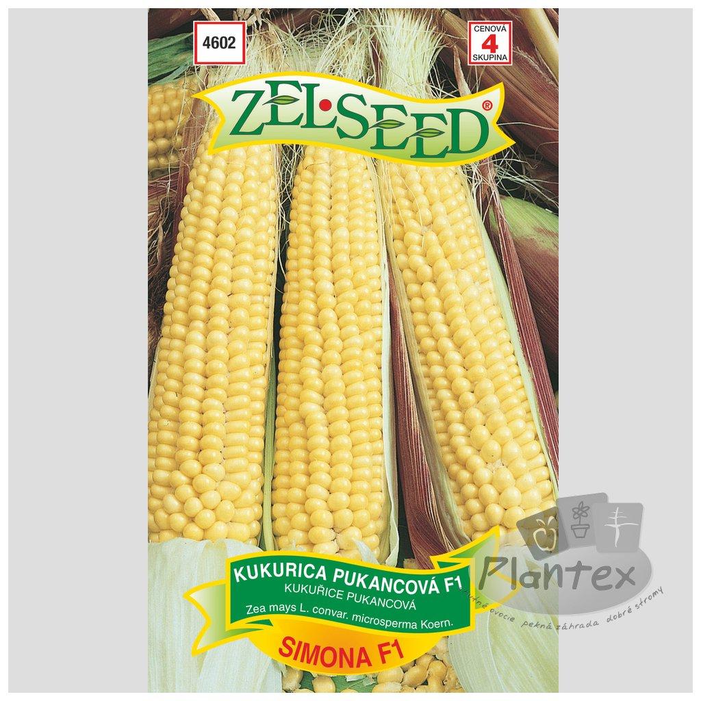 Zelseed semena kukurica simona 1