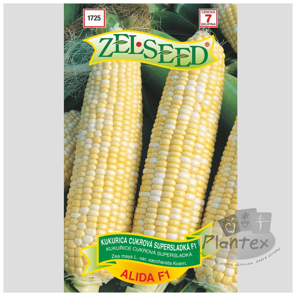 Zelseed semena kukurica alida 1