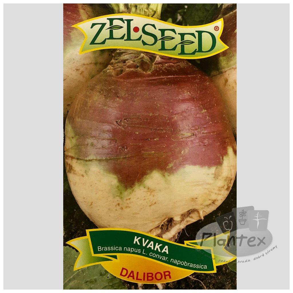 Zelseed semena kvaka dalibor 1