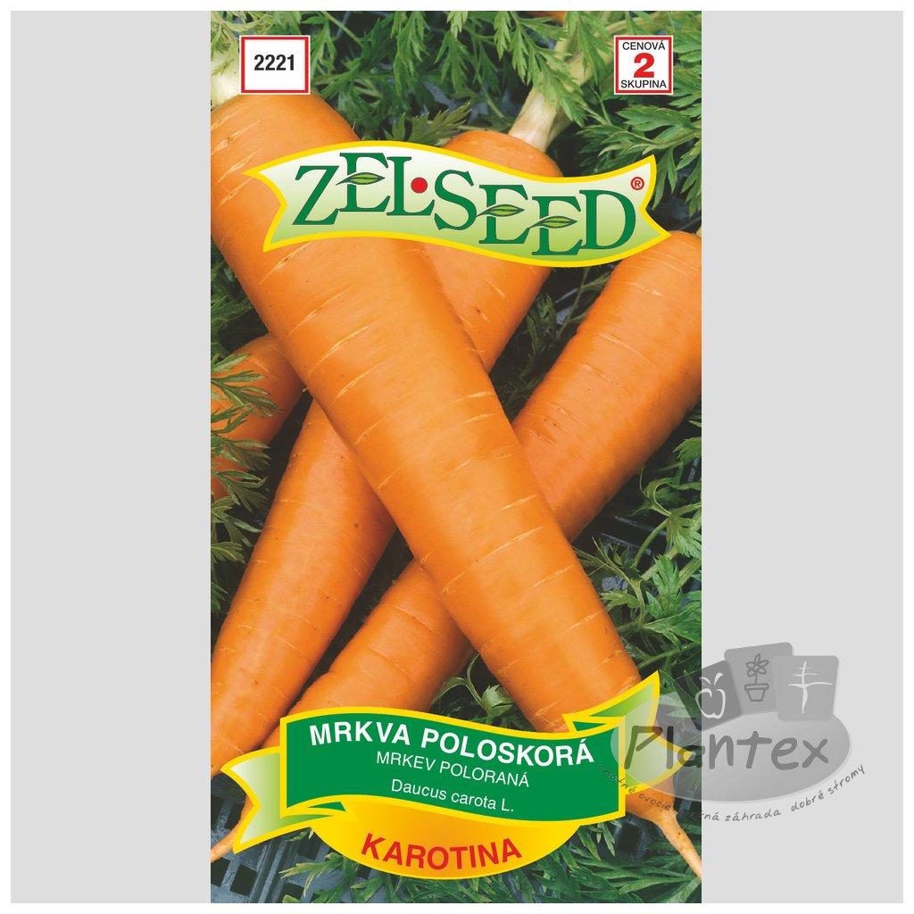 Zelseed semena mrkva karotina 1