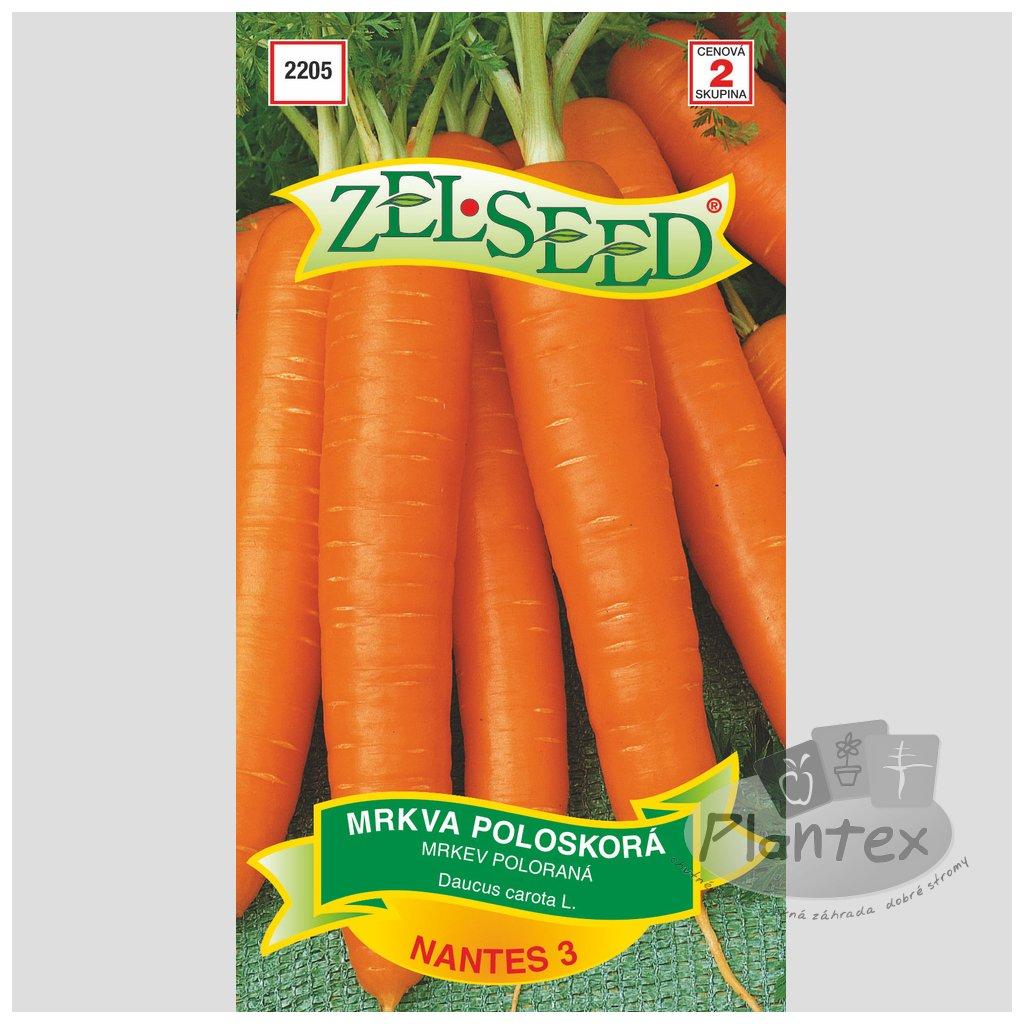 Zelseed semena mrkva nantes 1