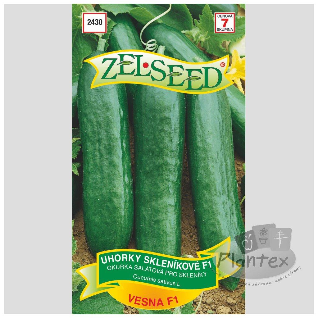 Zelseed semena uhorky vesna 1
