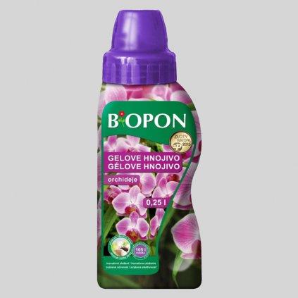 b orchideje