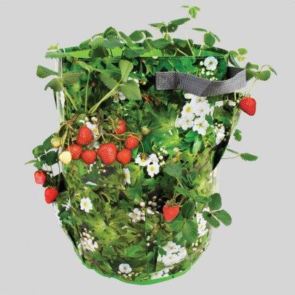 Taška na pestovanie jahôd