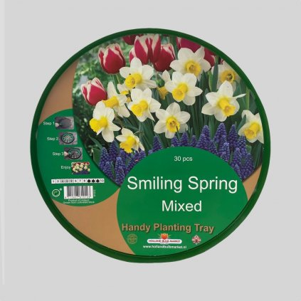 Cibuloviny Smiling Spring Mixed 1