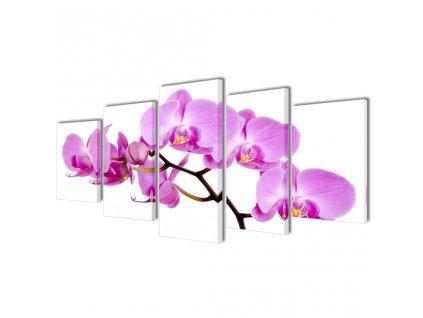 Sada obrazů, tisk na plátně, orchidej, 200 x 100 cm