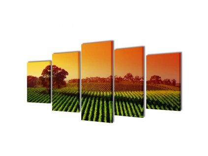 Set tištěných obrazů na plátně Pole 100 x 50 cm