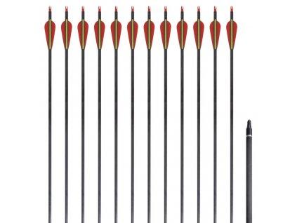 """Šípy pro standardní recurve luk, 30"""", 0,76 cm, karbonové, 12 ks"""