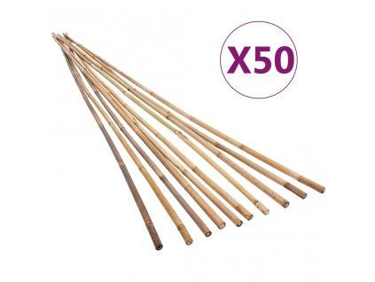 Zahradní bambusové tyče 50 ks 120 cm