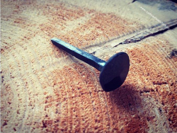 Hřebík kovaný