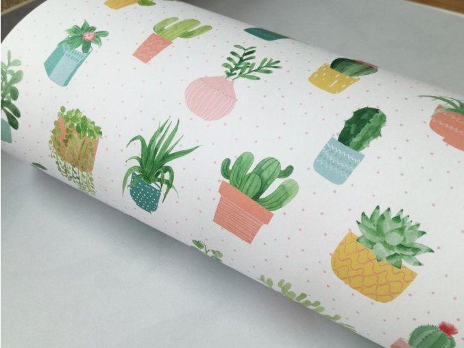 Dekorační papír kaktusy I