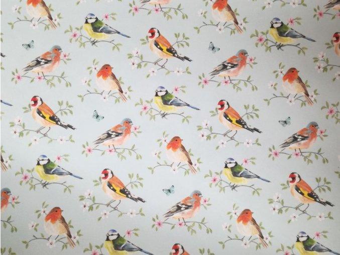 Dekorační papír ptáčci