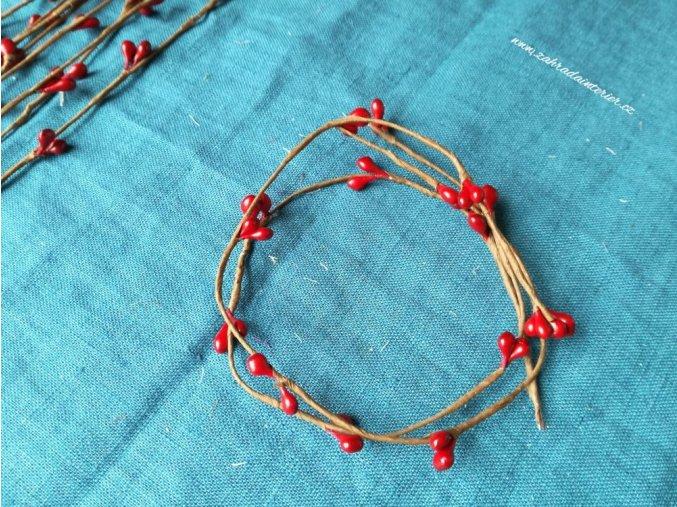 Větvička s červenými pupeny