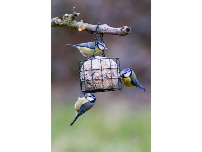 ptaci krmitko kosik na maxi lojovou kouli zelena domacnost