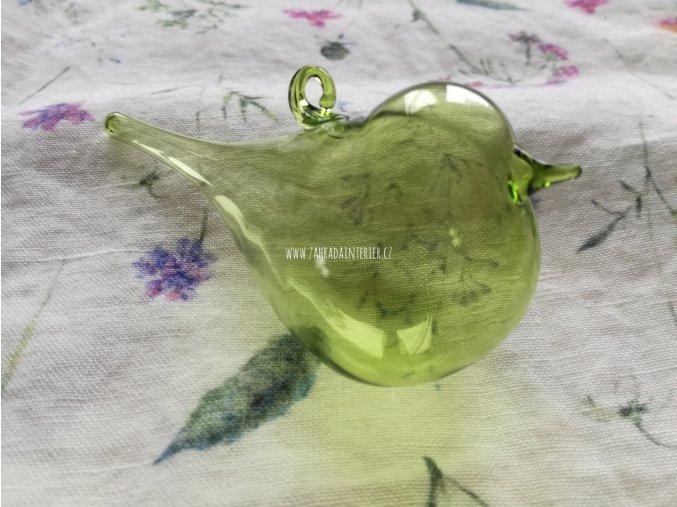 Ptáček světle zelený