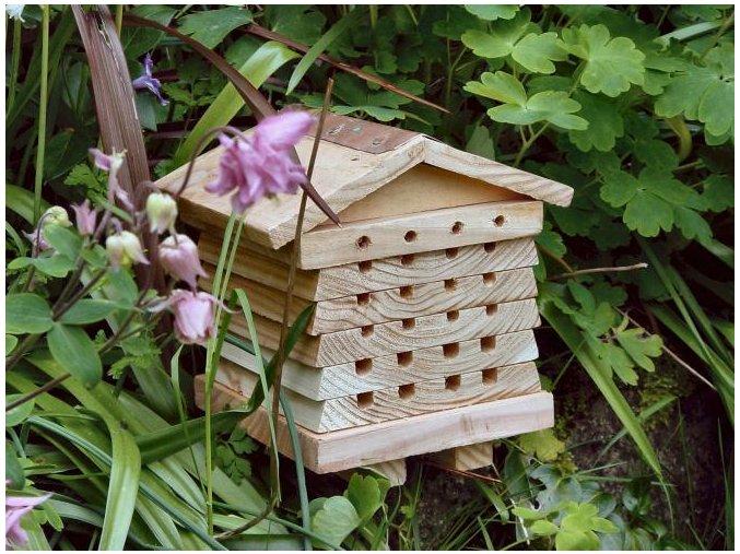 Dům pro pozorování včelek samotářek