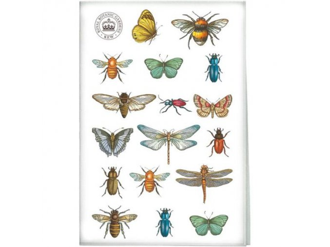 Utěrka hmyz