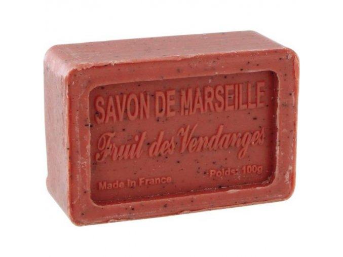 soap 100g gs