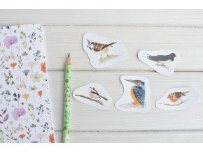 nalepky ptacci (1)
