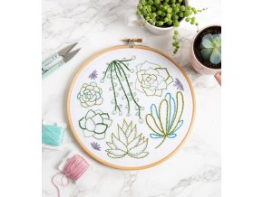 succulents embroidery kit 1