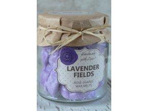 Levandule - vonný vosk v dárkovém balení 18 kusů