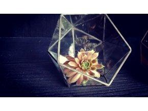 Florárium koule